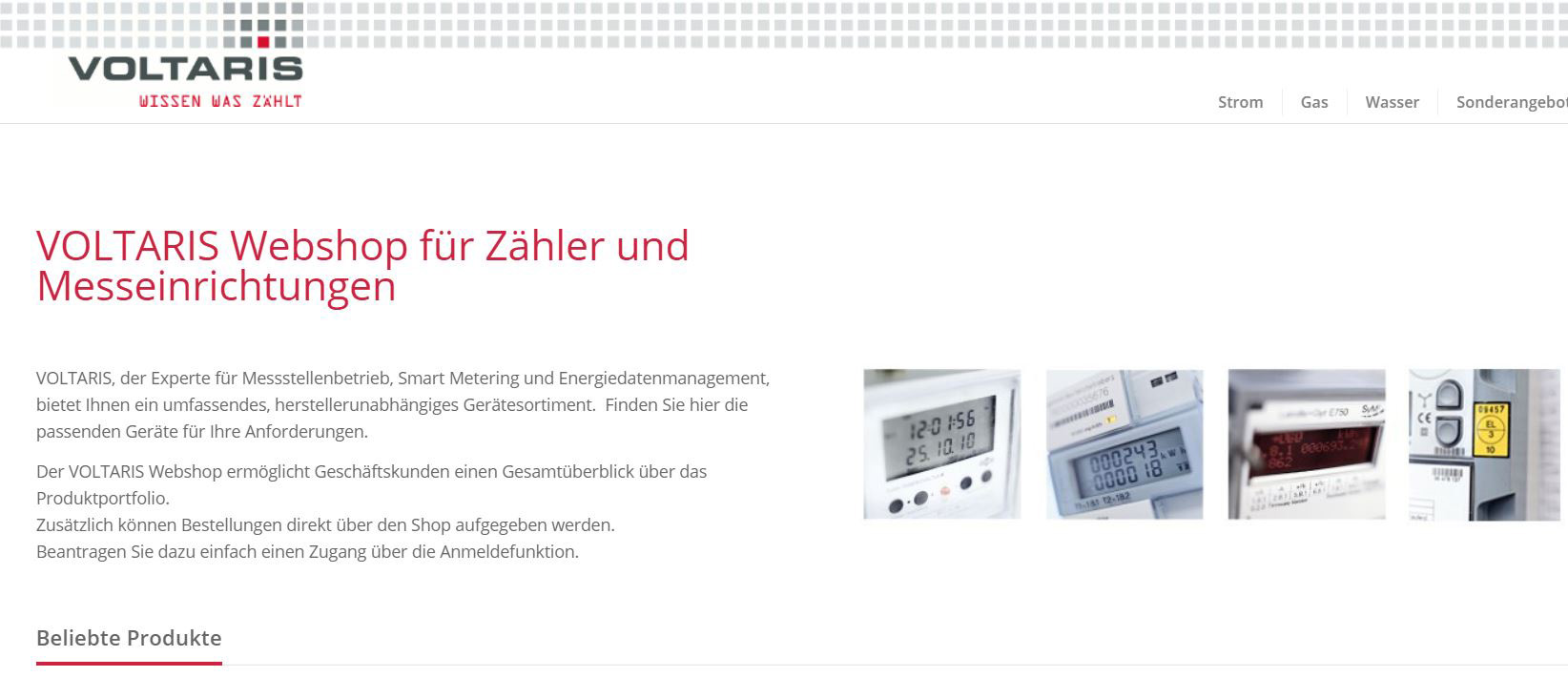 Webshop: Zähler für Strom, Gas, Wasser und Wärme
